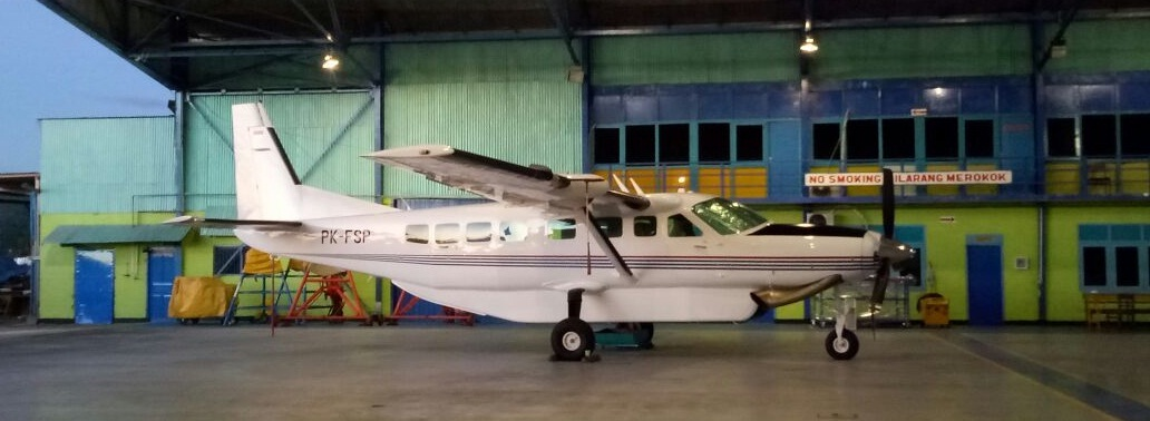 flyingsas twinotter 1
